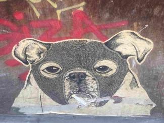 Vergängliche Street Art Kunst in Köln